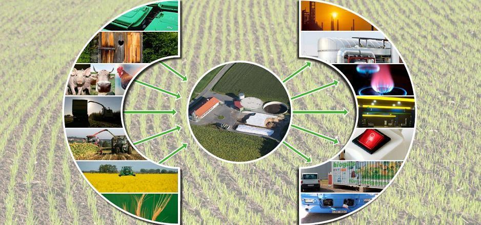 input-und-output-einer-biogasanlage