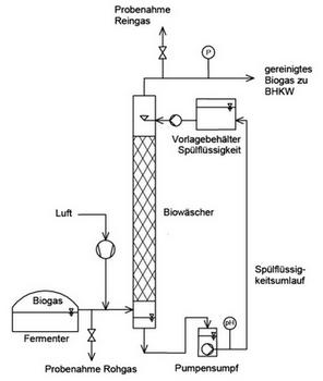 mikrobiologische-reduktion-des-h2s-gehaltes-von-biogas